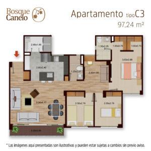 Imagen Planta Bosque Canelo